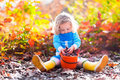 Little Girl Picking Acorns In Autumn Park Stock Photo - 58861610