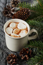 White Cup Of Fresh Hot Cocoa Or Hot Chocolate With Marshmallows On Grey Knitted Background Stock Image - 59014261