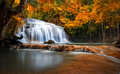 Orange Autumn Leaves On Trees In Forest And Mountain River Flows Royalty Free Stock Image - 59041166