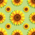 Background Seamless Pattern With Sunflowers Royalty Free Stock Image - 59275806