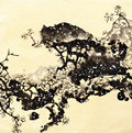 Ink Painting Plum Stock Photo - 59410200