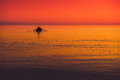 Seascape Colors Royalty Free Stock Image - 59430256