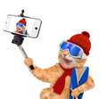 Cat With Skis Taking A Selfie Together With A Smartphone. Royalty Free Stock Image - 59442296