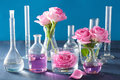 Alchemy And Aromatherapy Set With Rose Flowers And Chemical Flas Stock Photos - 59451123