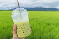 Holding A Cup Of Milk Greentea At The Rice Field Royalty Free Stock Image - 59475176