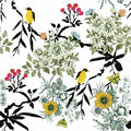 Watercolor Wild Exotic Birds On Flowers Seamless Pattern On White Background Stock Image - 59570361
