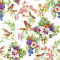 Watercolor Wild Exotic Birds On Flowers Seamless Pattern On White Background Royalty Free Stock Photo - 59570365
