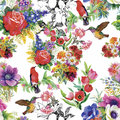 Watercolor Wild Exotic Birds On Flowers Seamless Pattern On White Background Stock Images - 59570444