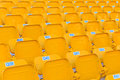 Stadium/Arena Seats Stock Photo - 59595650