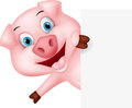 Happy Pig Cartoon With Sign Stock Image - 59597581