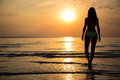Silhouette Of Young Woman In Bikini Walking On Beach At Sunset Stock Photos - 59615243