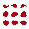 Red Rose Petals  On White Stock Image - 59634211