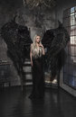 Beautiful Blond Woman In Black Dress With Wings Royalty Free Stock Images - 59678579