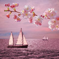 Sunset Ocean With Sailboats, Blooming Cherry Twig Stock Photo - 59680470