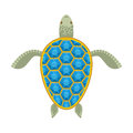 Water Turtle Sapphire Carapace. Stock Images - 59687934