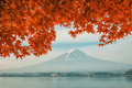 Mt. Fuji With Fall Colors In Japan Stock Images - 59693244