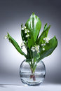 Lily Of The Valley Royalty Free Stock Image - 59756976
