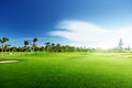 Golf Course Royalty Free Stock Image - 59769196