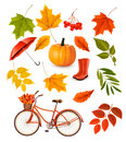Set Of Colorful Autumn Leaves And Objects. Royalty Free Stock Photos - 59793308