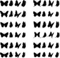 Butterfly Collection 2 Stock Images - 5982614