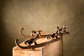 Old Ice-skates Stock Photography - 59824172