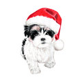 Cute Christmas Puppy Dog With Santa Hat Illustration. Hand Drawn Colored Pencil Art Royalty Free Stock Images - 59856069