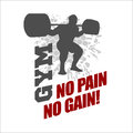 No Pain No Gain -  Label For Flayer Poster Logo T Stock Photos - 59861473