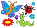 Bug And Flower Illustration Royalty Free Stock Photos - 5991128