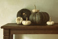 Green Pumpkins And Small Gourds On Table Royalty Free Stock Image - 59900006