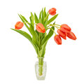 Red Tulips In A Crystal Decanter Stock Photo - 59917010