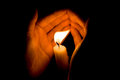 Hands Protect Bright Candlelight In The Darkness. Royalty Free Stock Photos - 59921418