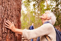 Senior Woman Touching Tree In Forest, Man In The Background Royalty Free Stock Image - 59927826