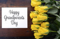 Yellow Roses Gift For Grandparents Day. Stock Photos - 59957853