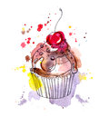 Cupcake Cake With Chocolate And Cherry. Watercolor Stock Images - 59979594