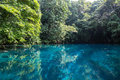 Blue Hole In Paradise, Vanuatu Royalty Free Stock Image - 59981816