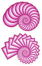 Two Pink Fractal Spirals Stock Photography - 66762