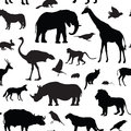 Animals Silhouette Seamless Pattern. Wildlife Animal Silhouettes Royalty Free Stock Images - 60025089
