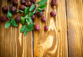 Dried Rose Hips Royalty Free Stock Image - 60051106