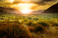 Sun Rising Behind Grass Field In Open Country Of New Zealand Sce Royalty Free Stock Photo - 60092135
