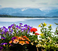 Scenic Landscape With Lake And Flowers In Bavaria Stock Photos - 60124723