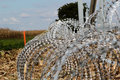 Barbed Wire Installing On The Hungarian-Croatian Border Stock Photos - 60165593