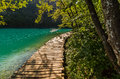 Deep Forest Stream Path With Crystal Clear Water In The Sunshine. Plitvice Lakes, Croatia Royalty Free Stock Photos - 60175118