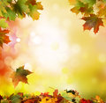 Autumn Falling Leaves Background Stock Photography - 60199362