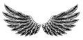 Vintage Woodcut Wings Royalty Free Stock Photography - 60279727