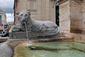 Rome, Italy. Lion Statue Spitting Water In Moses Fountain. Royalty Free Stock Photography - 60294367