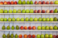 Apples And Pears Royalty Free Stock Photos - 60329858