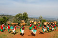 Drummers Of Burundi Royalty Free Stock Photo - 60332715