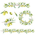 Watercolor Olive Branch Background. Royalty Free Stock Photos - 60415308