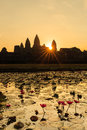 Sunrise In Angkor Wat With Water Lilies Royalty Free Stock Photography - 60442597
