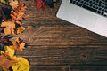 Background With Laptop And Autumnal Leaves Royalty Free Stock Photos - 60448158
